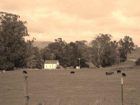 Harm Hist Farmland